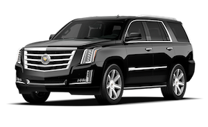Book an SUV for a family vacations or families with children. The SUV accomodates up to 6 passengers and 6 suitcases. It is great for children and car seats.